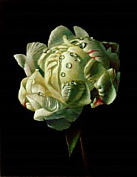 White Peony | James McDonald