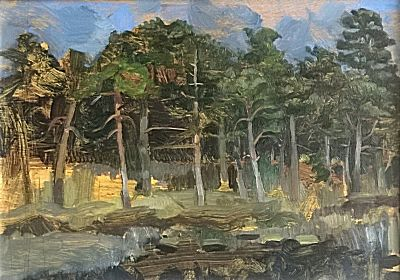 Stand of Pines on Egdon Heath Dorset | Toby Wiggins